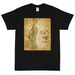 Vintage Anatomical Image on t-shirt, the Nervous System Anatomy