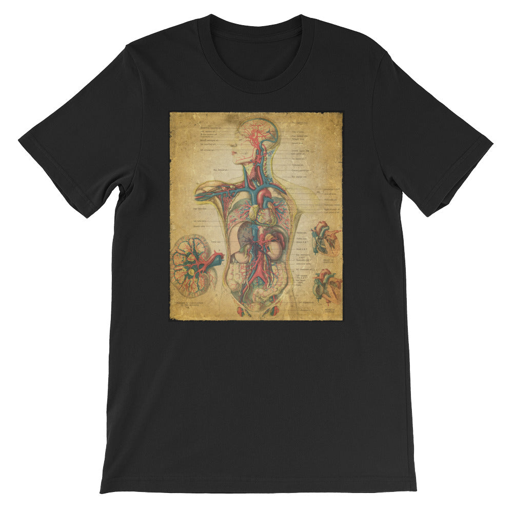 Vintage Anatomical Image on t-shirt, the Circulatory System Anatomy