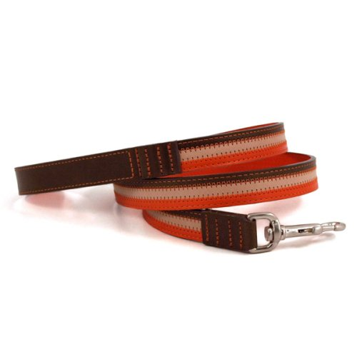 "Sassy Orange Dog Lead (48""L x 1""W)"