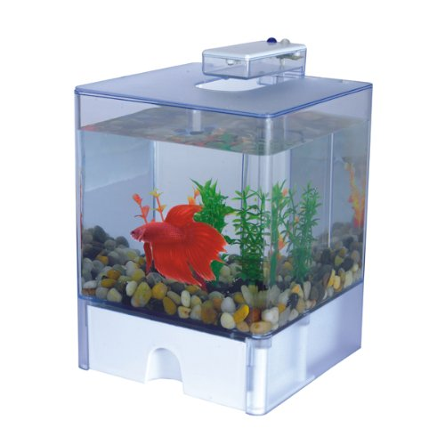 Aqua Cube Betta Aquarium - 0.8 Gallon