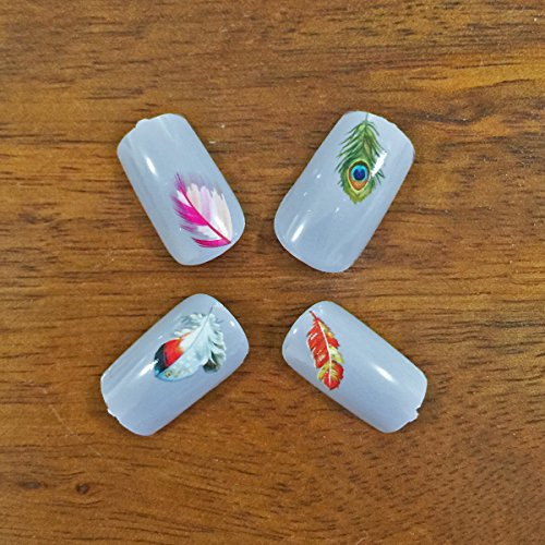 Wrapables Fingernail Tattoo Nail Art Water Nail Tattoos Water Transfer Slide Tattoos Nail Decals, Feathers (11 Designs/248 Nail Tattoos)