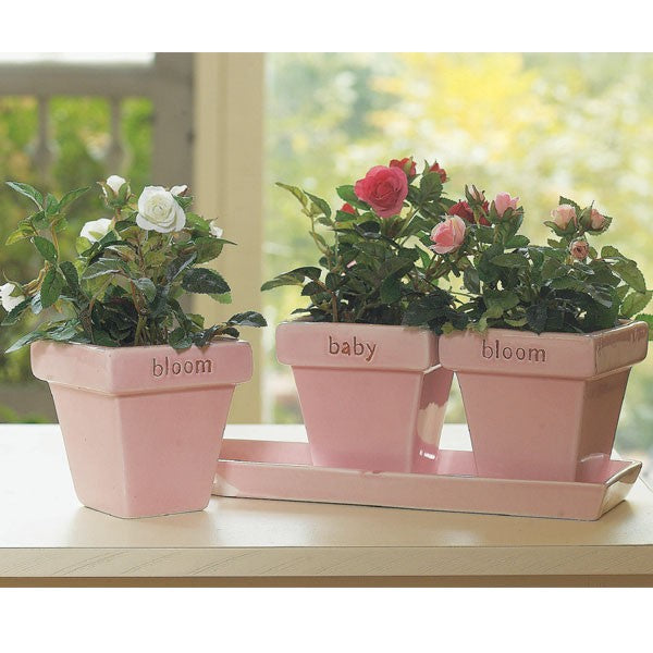 Inspirational Ceramic Planters with Tray - Bloom Baby Bloom