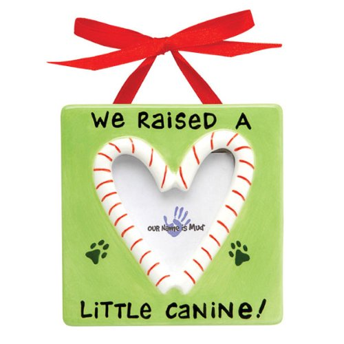 Pampered Pets Christmas Frame Ornament - Little Canine