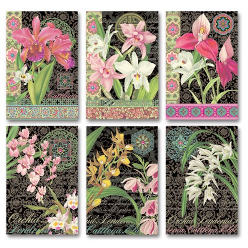 Midnight Orchids Note Card Set