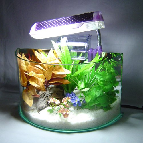 Bowfront Aquarium w/ Light & Filter