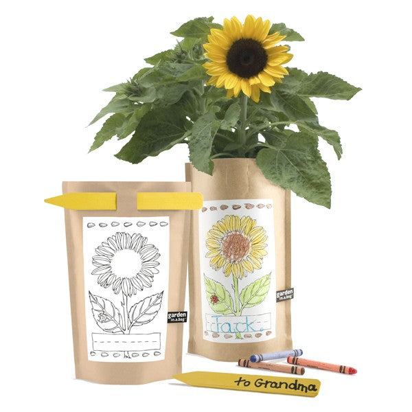 Personalized Garden in a Bag for Kids