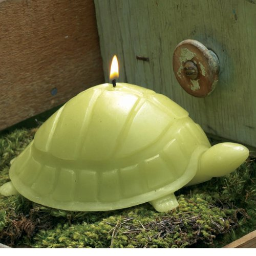 Novelty Garden Candle