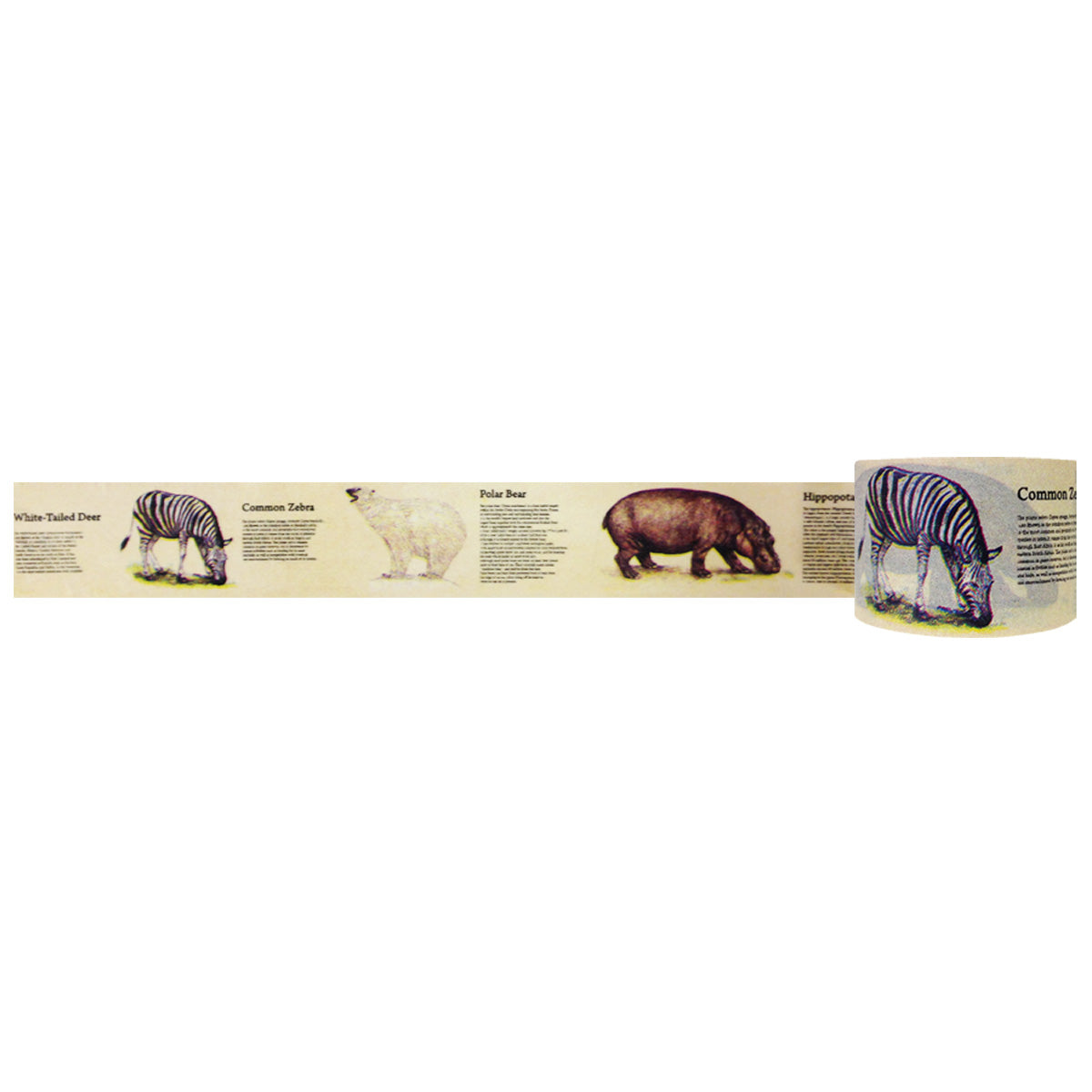 Wrapables Floral & Nature Washi Masking Tape, At the Zoo