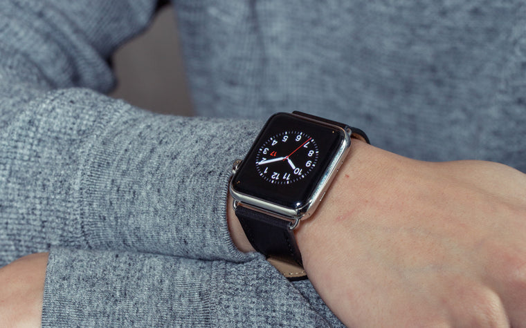 Pin and Buckle Apple Watch Bands - Full Grain Vegetable Tanned Leather - Luxe - Nero Black - Silver
