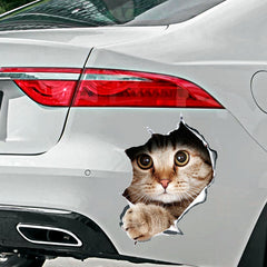 3D Kitten Anime Funny sticker car styling