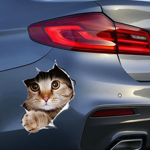 3D Kitten Anime Funny sticker car styling - Jonjarash Shop