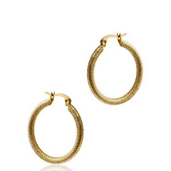 Ladies' Earrings Time Force TS5147PY