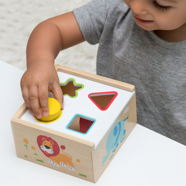 Shapes Wooden Shape Sorting Box (6 pieces)