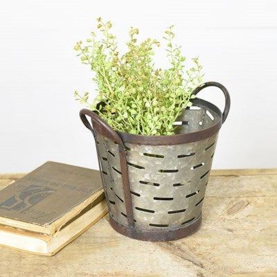 Olive Buckets 10