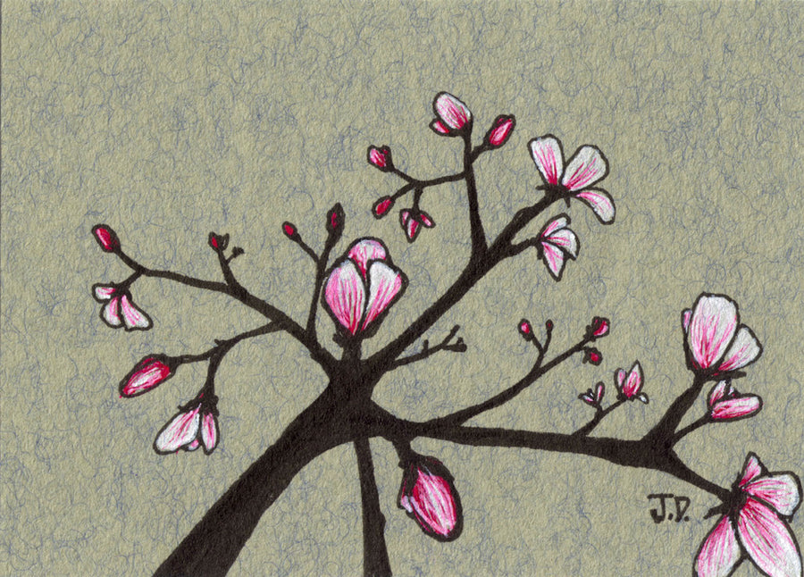 Magnolia Blossom art in grey and pink. Tree art by artist Jessica Doyle. Part of a series of four drawings. Prints available for purchase. Art for your walls.