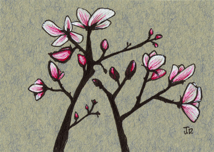 Magnolia blossom art in pink and grey by artist Jessica Doyle