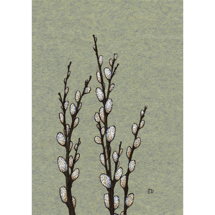 Spring Pussy Willows no. 2 Print