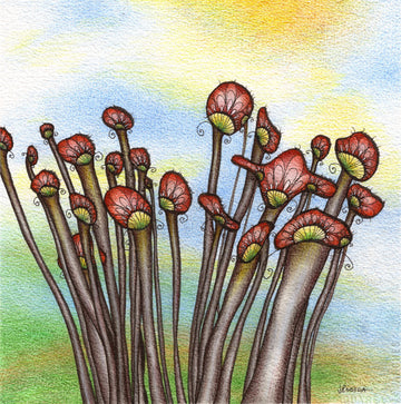 Mushrooms, Fungi, mycology, illustration by artist Jessica Doyle