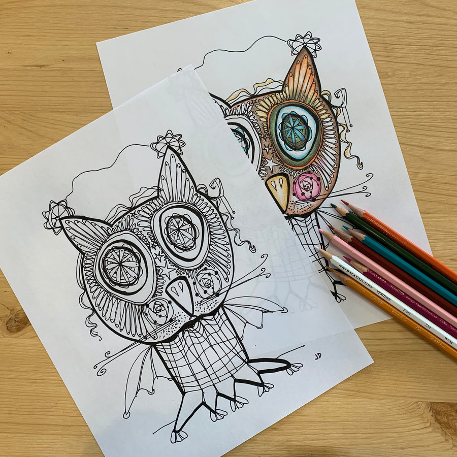 Bat Owl Colouring Page for Adults PDF Digital Download, Instant download