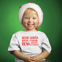 Christmas (t-shirts/bodysuits) - Dear Santa, Before I Explain...