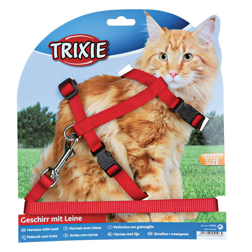 Cat Harness & Lead - Big Cat
