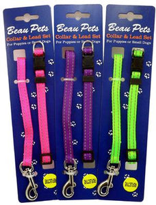 Nylon Reflect Puppy Collar & Lead Set