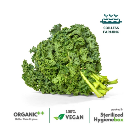 Hail Kale -  1 Box (100 gm / 2 Pc)