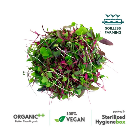 Marvelous Microgreens -  1 Box (50 gm)