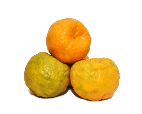 Nagpur Oranges, 1 Box (1 Kg)