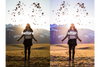 ULTIMATE CREATOR BUNDLE - 175 Lightroom Presets + 38 Film LUTs - VENTURESOME MEDIA