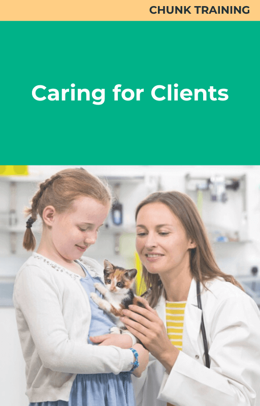 Caring for Clients Bundle