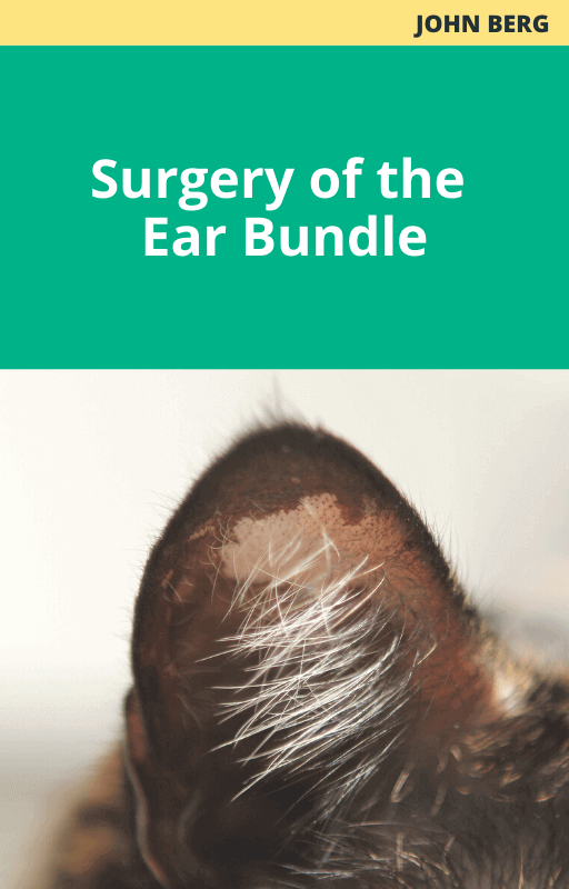Surgery of the Ear Bundle