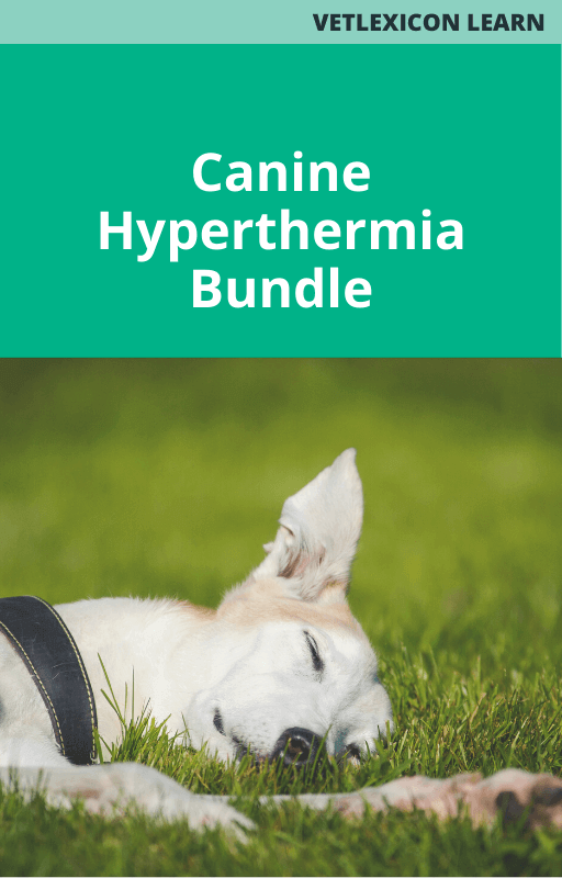 Canine Hyperthermia Bundle