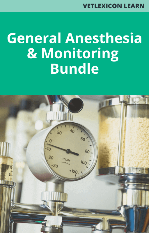General Anesthesia and Monitoring Bundle