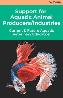 WAVMA Support for Aquatic Animal Producers/Industries Current and Future Aquatic Veterinary Education