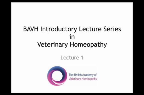 BAVH Introductory Lecture Series