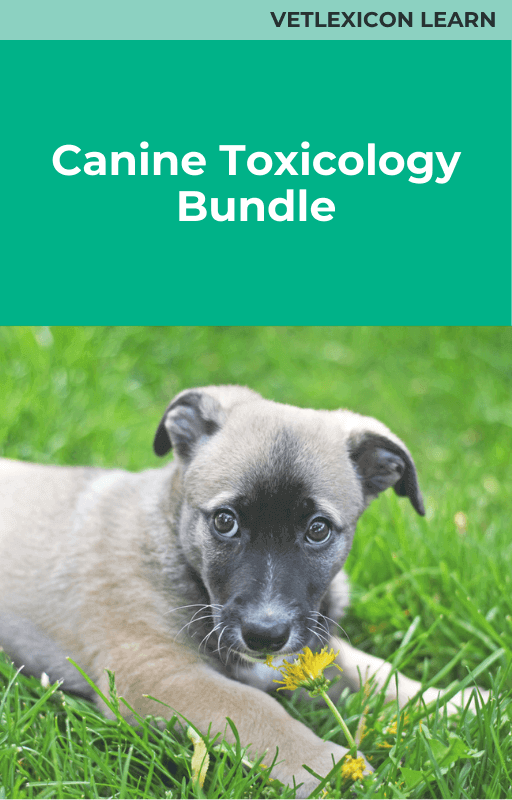 Canine Toxicology Bundle