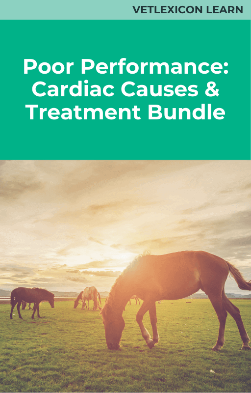 Poor Performance: Cardiac Causes and Treatment Bundle