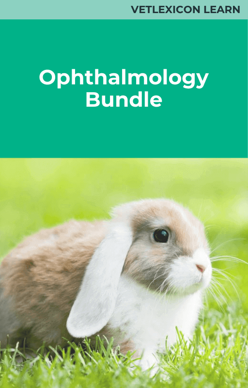 Ophthalmology Bundle (Rabbits)