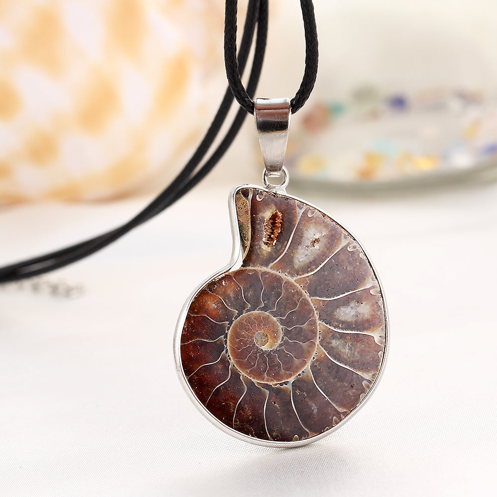 Polished Ammonite Fossil Necklace - Egret Jewellery