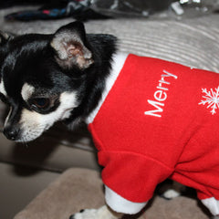 Merry Christmas Red Fleece Chihuahua and Small Breed Dog Jumper Chihuahua Clothes and Accessories at My Chi and Me