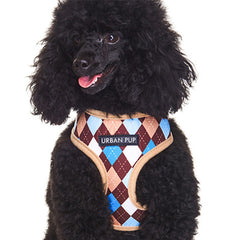Brown and Aqua Argyle Harness by Urban Pup Chihuahua Clothes and Accessories at My Chi and Me