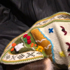 Size 3 Hand Embroidered Peruvian Dog Jumper Cream and Green 27cm Chihuahua Clothes and Accessories at My Chi and Me