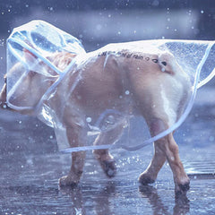 Waterproof Rain Cape for Small Dogs and Chihuahuas Size Small