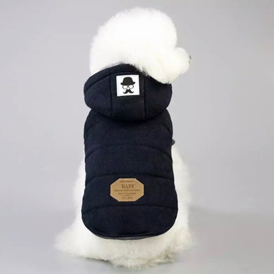 Super Soft Padded Chihuahua or Small Dog Coat Black 4 Sizes