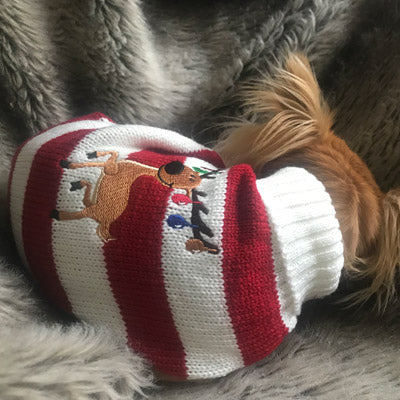Rudolf The Red Nosed Reindeer Dog Christmas Dog Jumper Chihuahua Clothes and Accessories at My Chi and Me