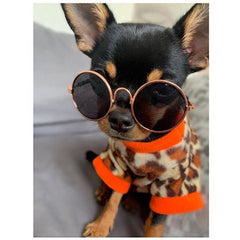 Chihuahua Puppy Fleece Leopard Print With Orange - 4 SIZES