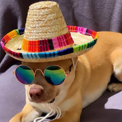 Small Dog Chihuahua Mexican Sombrero Hat Chihuahua Clothes and Accessories at My Chi and Me