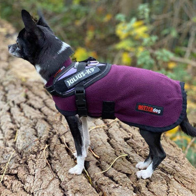 HOTTERdog© Fleece Water Repellent Dog Coat 12 Inch