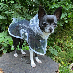 White Waterproof Raincoat for Chihuahuas and Small Dogs - 3 SIZES Chihuahua Clothes and Accessories at My Chi and Me